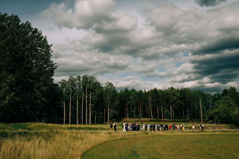 A wedding photo showing the wedding party walking through a field