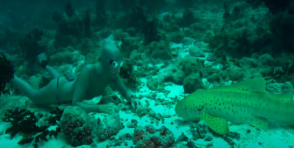Ocean shot Mura Technology